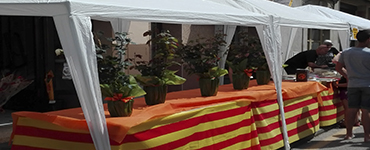 Diada de Sant Jordi masquefa