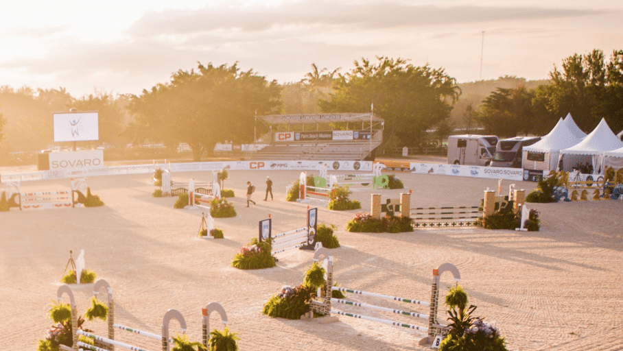 CSI3* WELLINGTON