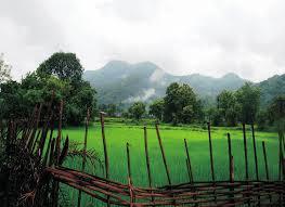 Uttar-Pradesh-grants-Revenue-Status-to-3-forest-villages-under-FRA-2006
