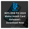 IBPS RRB PO 2019 Mains Admit Card Released : Download Now