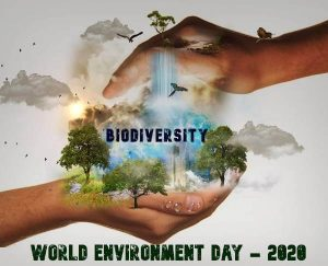 World-Environment-day-5