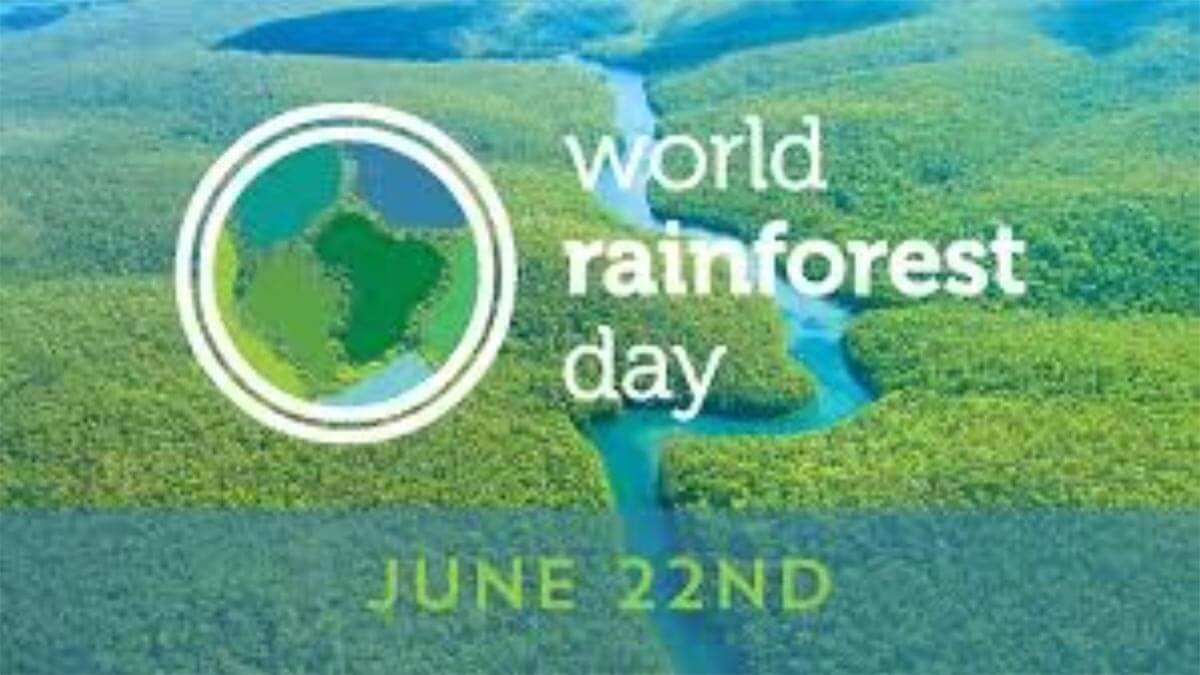 World Rainforest Day