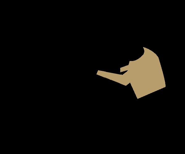 Illustration derbauer small