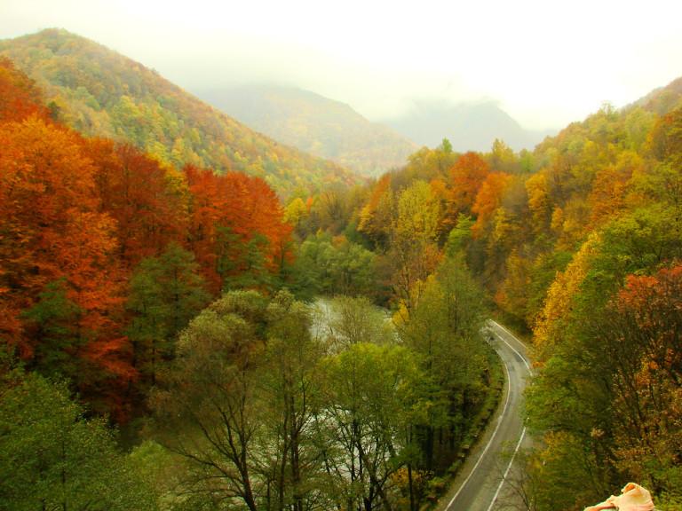 Parcul Național Defileul Jiului beready.ro