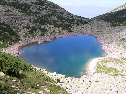 Lacul Stevia beready.ro 2