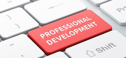 1. professional development