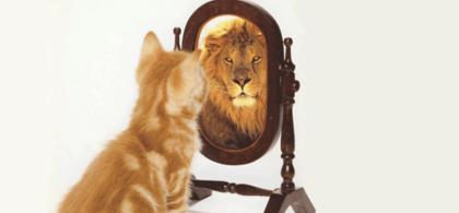 1. confidence