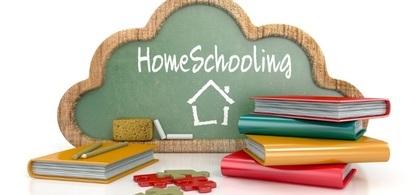 4. homeschooling