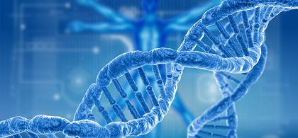 1. genetics