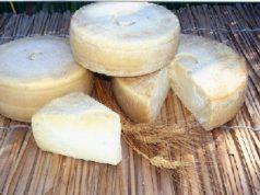 scoperta-dell-and-rsquo-universit-and-agrave-di-cagliari-arriva-il-pecorino-anti-colesterolo