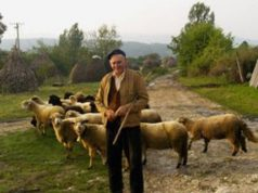 pastori-sabato-assemblea-css-a-decimoputzu-su-crisi-comparto-agricolo