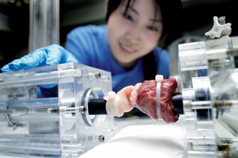 P32_MedicalEngineering_HeartValve2.jpg