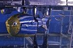 /n/t/l/TE_Robot_fish.jpg