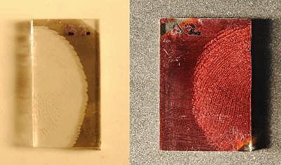 /d/s/a/TE_fingerprint.jpg