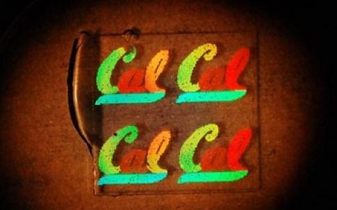 /x/m/u/TE_chameleon_cal380.jpg