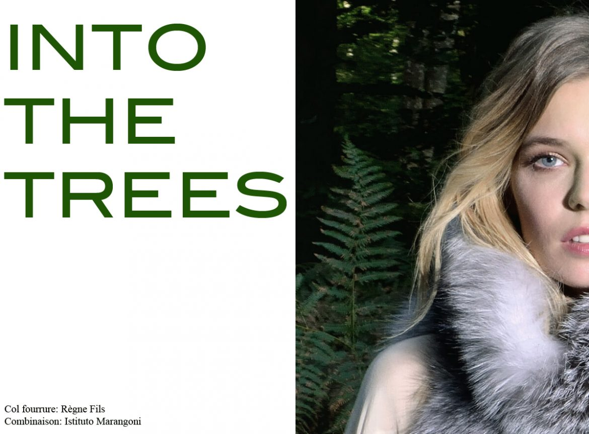 INTO THE TREES1