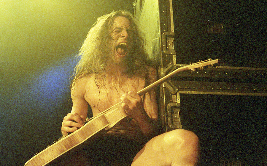 Picture of Ted Nugent in concert by Bill O'Leary