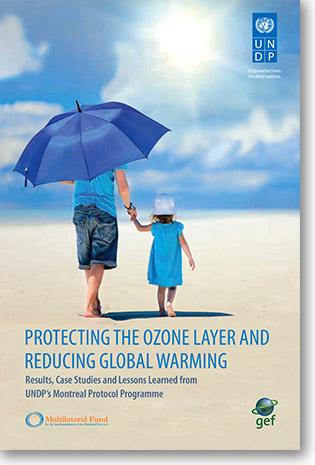 UNDP-report