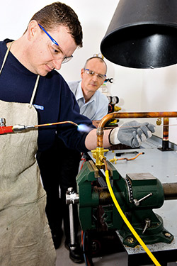 Brazing-Airedale