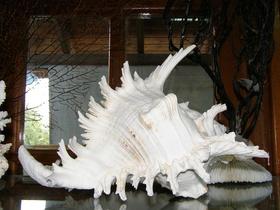 Muzeum lastur v Benitses 003