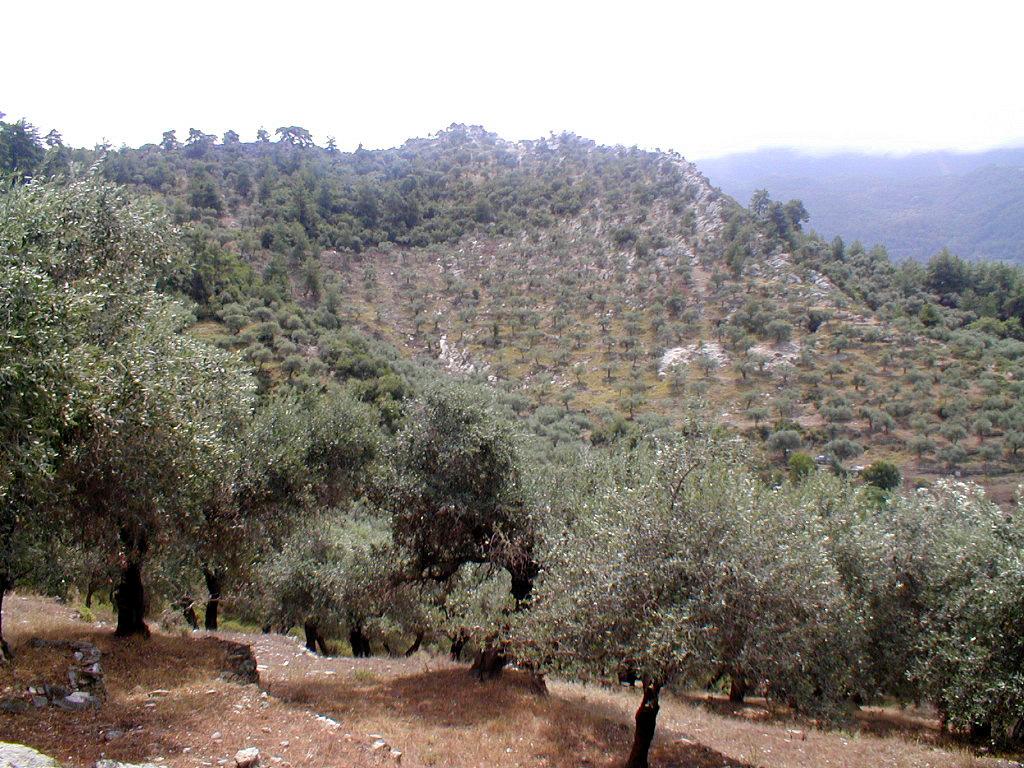 výhled na Artemidin chrám