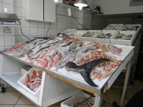 Rybárna s čerstvými úlovky v Chiosu