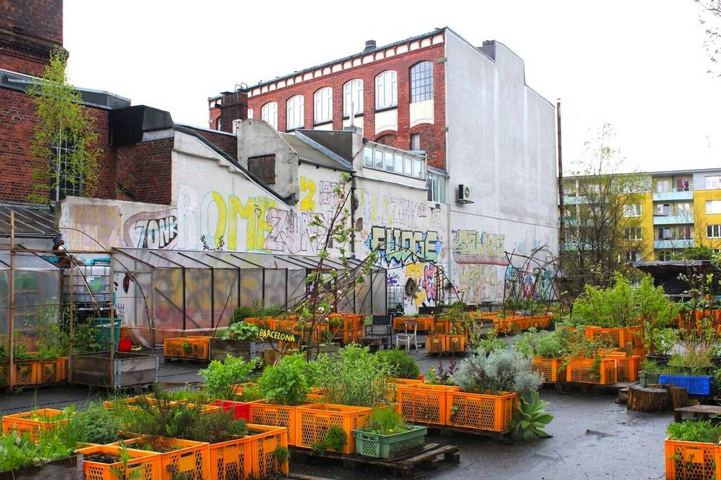 my garden in the city urban gardening is the latest trend - Urban Garden