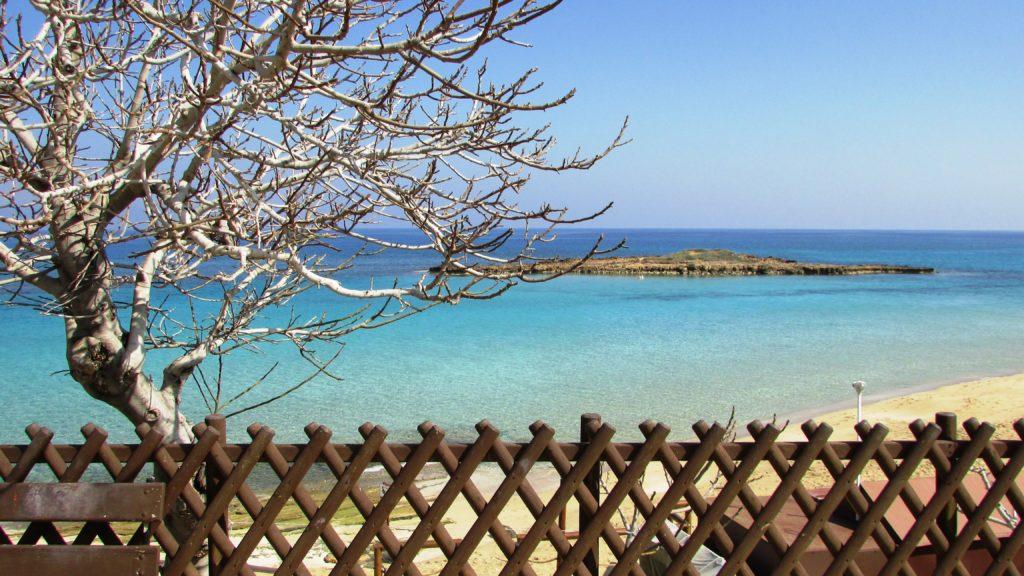 beach-landscape-flower-calm-resort-cyprus-820252-pxhere.com