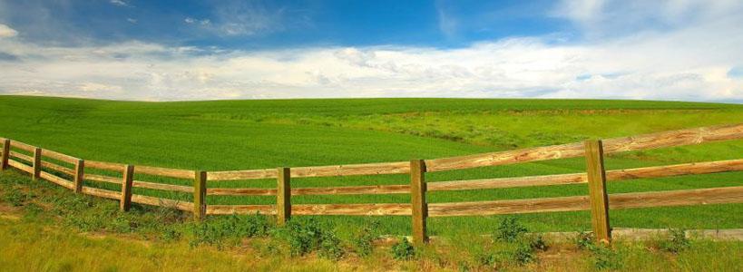 Земельный участок в Писсури – купить по отличной цене