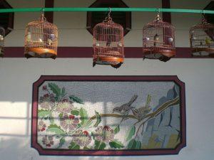http://s3-eu-central-1.amazonaws.com/eltoma-training.com/wp-content/uploads/2018/07/18163606/HK_Mongkok_Yuen_Po_Street_Bird_Garden_Market_1.jpg