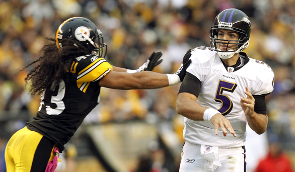 Troy Polamalu, Joe Flacco