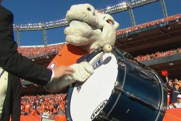 Bronco-Mascot-Drum