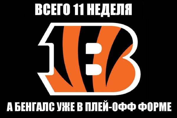 Bengals_meme