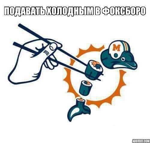 dolphins patriots meme