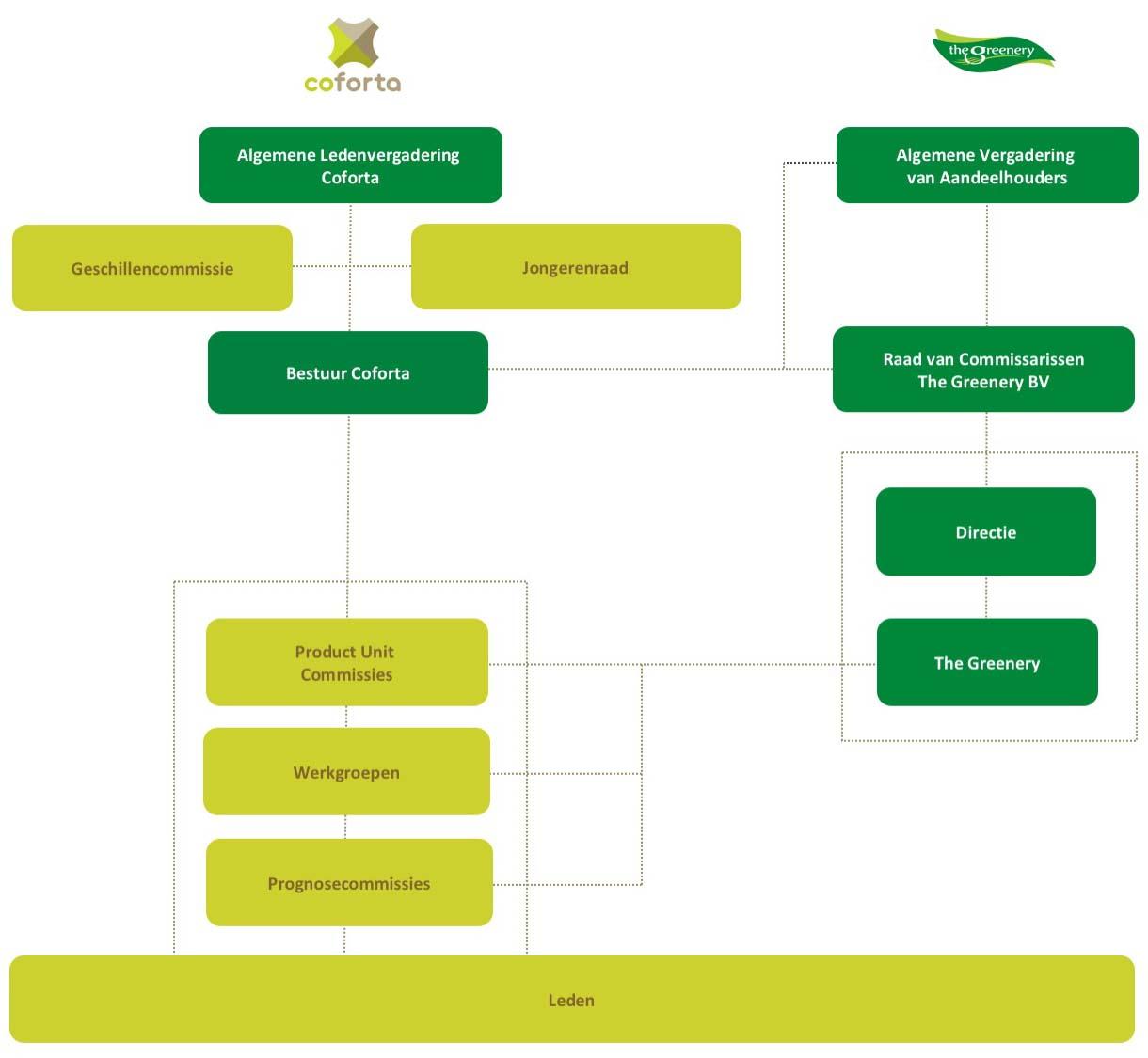 organisatiemodel coforta