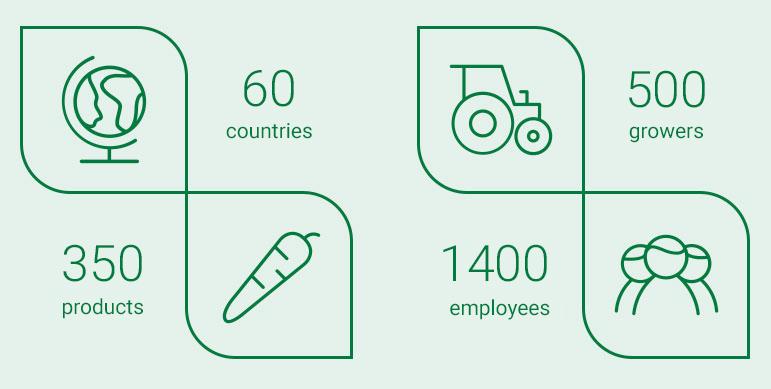 organisatie-cijfers