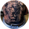 lion-heeboo