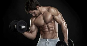 brazos_biceps