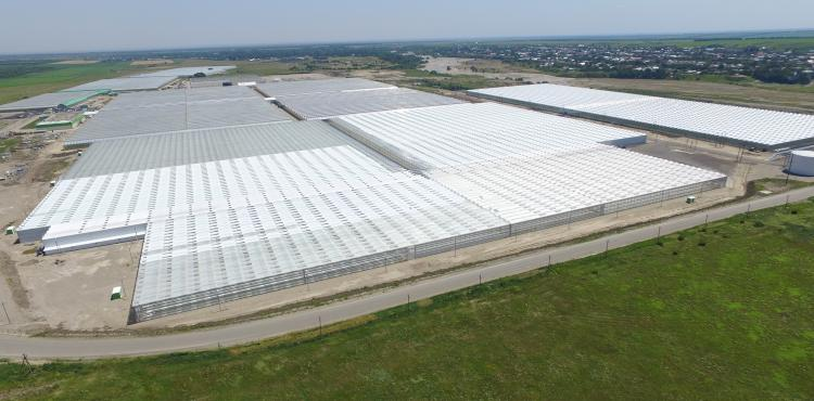 Agro-Industrial Holding, ECO-Culture, is constructing 185.6ha of greenhouses in Russia with Hortilux fixtures.