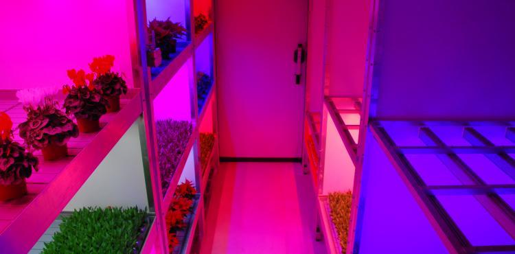 LED'S RESEARCH! vereenvoudigt onderzoek naar LED-lichtrecepten