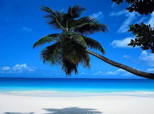 02CoteDor_beach-offerta