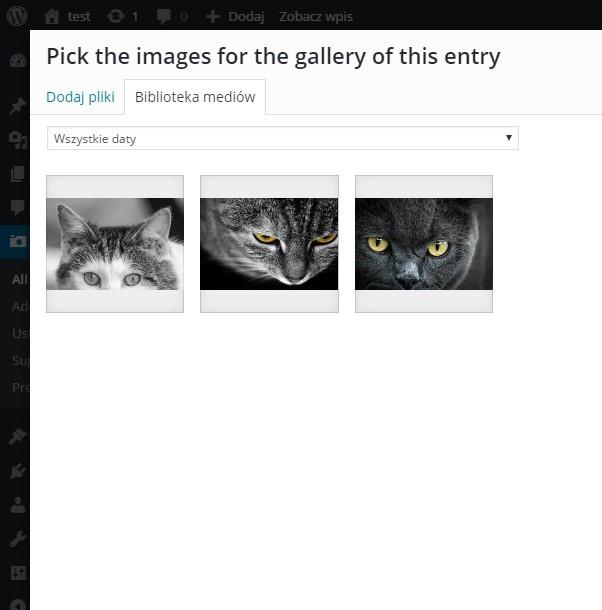 Wybór plików do zahasłowanej galerii
