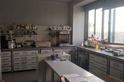 Molecular Pathology Research Lab at the GUC.
