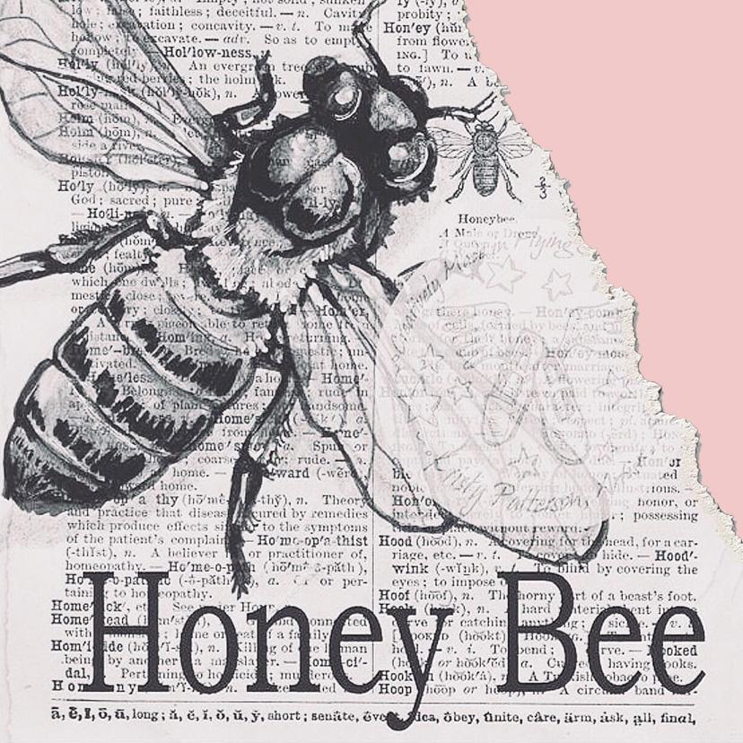 Zeichnung einer Honig-Biene auf Zeitungspapier