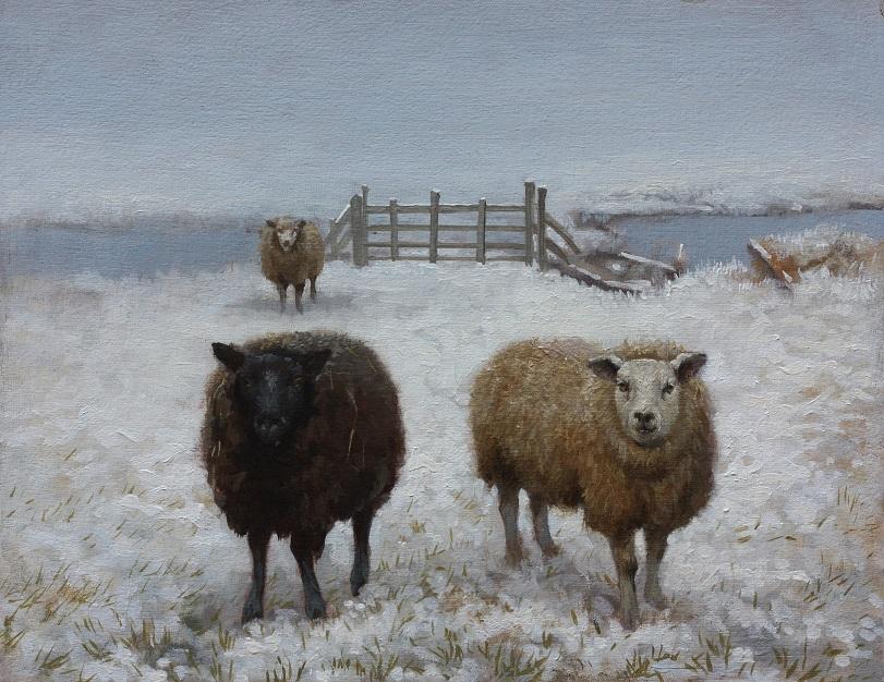 Ton van steenbergen  twee schapen  olieverf 30x24cm. e. 900 00