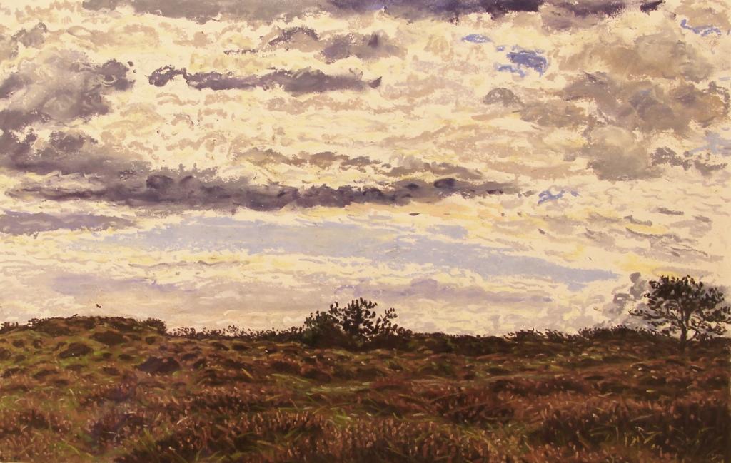 Joanna quispel  duinen oosterend  pastel  25 x 35 cm. e. 825 00 %281024x649%29