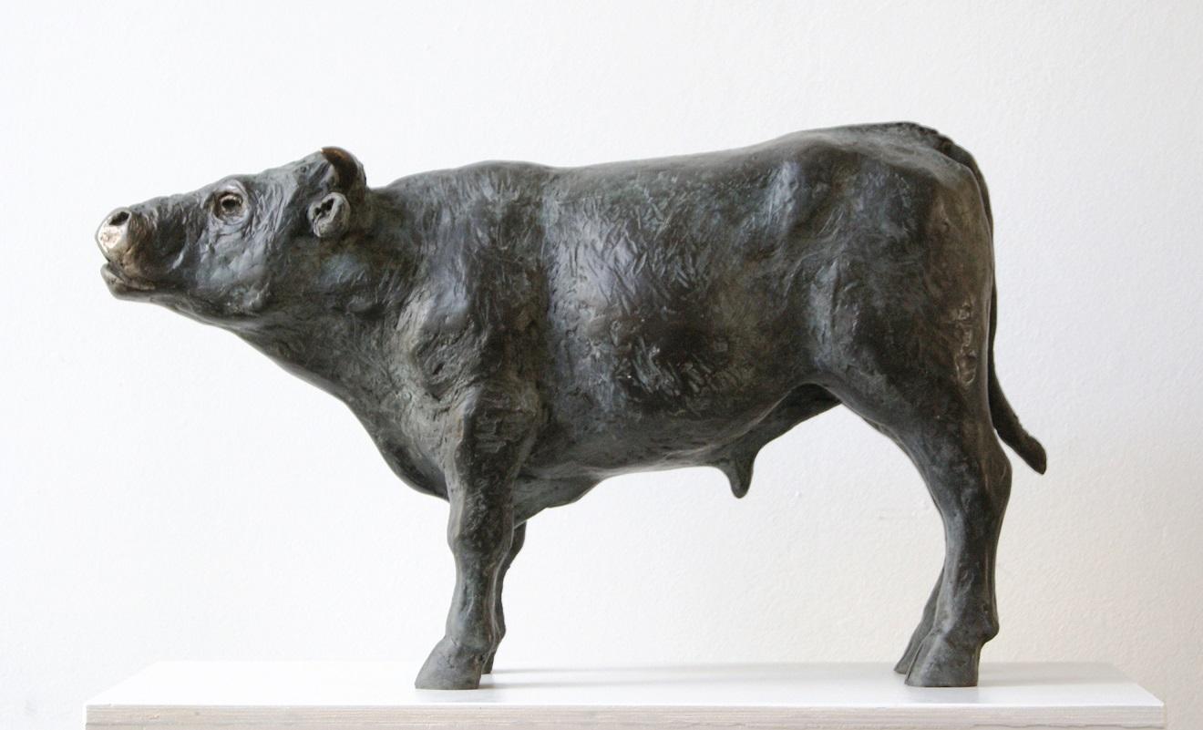 Fiona zondervan   blaarkopstier  brons  45cm lang  e. 3900 00