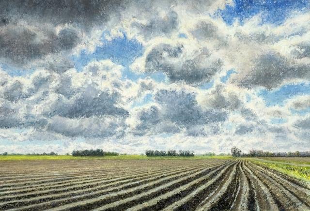 Gezien van de riet  akker in het hoge land  aquarel en pastel  22 x 32 cm. %e2%82%ac790 00   gvdr %28640x436%29