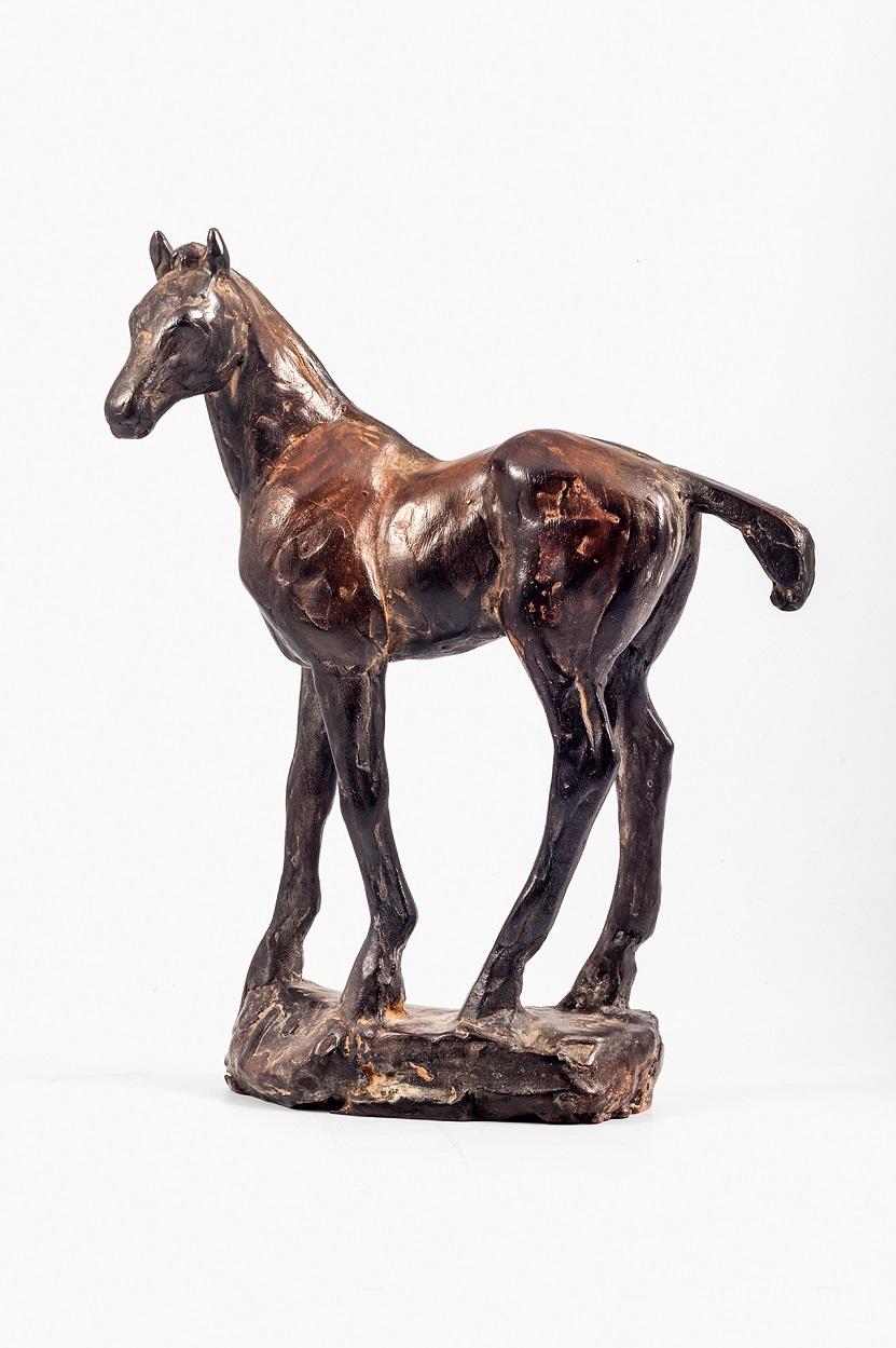 Peter engelen  veulen  brons  20x24 cm.