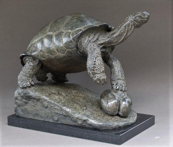 Anne shingleton  aldabra  reuzenschildpad  brons  24 5x29x18 cm. %e2%82%ac 4500 00